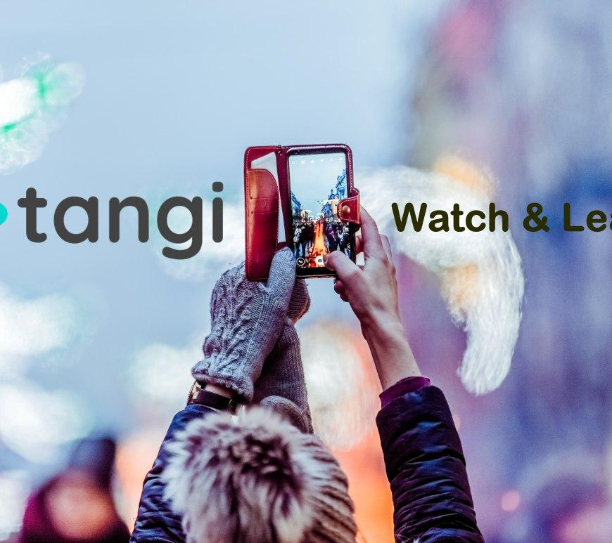 Conheça o Tangi, o novo app do Google que é uma mistura de TikTok e Pinterest